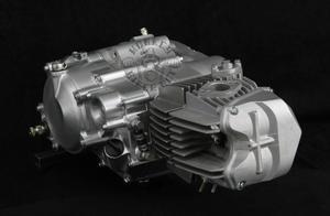 Daytona 190cc 4valve Anima